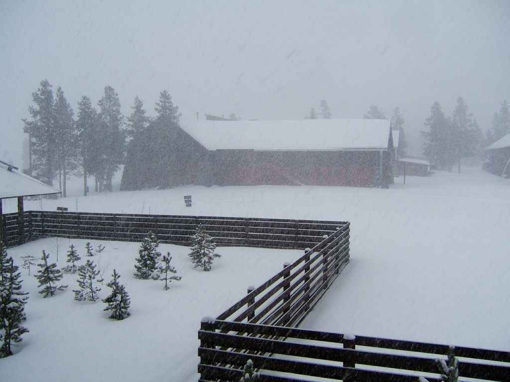 Photo of a zig-zag fence in front of a red barn-like building in a snowy landscape in Yellowstone National Park